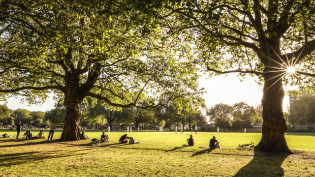 time-lapse of a cricket match in london fields park hackney e8 - hackney stock videos & royalty-free footage