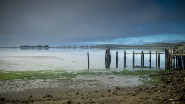 timelapse of abandoned pier at bodega bay, california - low tide stock videos & royalty-free footage