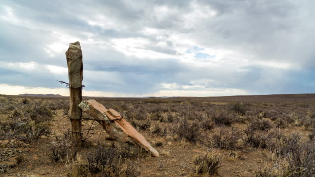 vidéos et rushes de timelapse of an old fence pole in late afternoon light on an overcast day in a karoo farm landscape - karoo