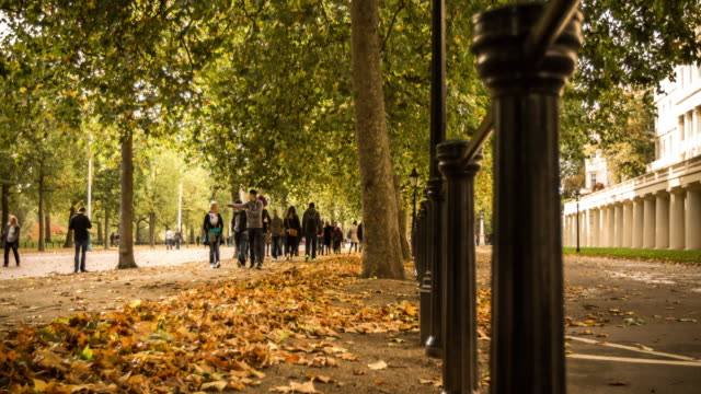Timelapse of Autumn Colours at The Mall in London
