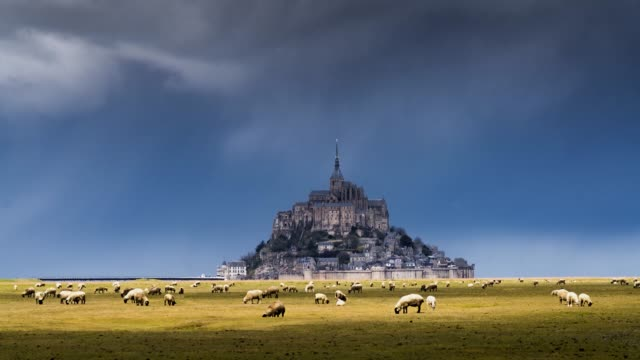 timelapse of baie du mont saint-michel with sheeps and dark sky - english channel stock videos & royalty-free footage