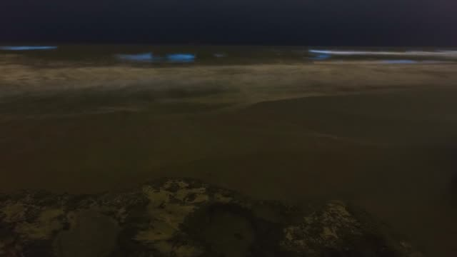 Timelapse of bioluminescent tide / red tide glowing blue in San Diego County, California