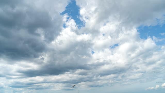 vídeos y material grabado en eventos de stock de 4k time-lapse de cielo azul y nubes en la playa de wasaga de ontario, canadá. - sólo cielo
