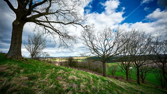 Timelapse of Danish landscape in spring with cloudscapes