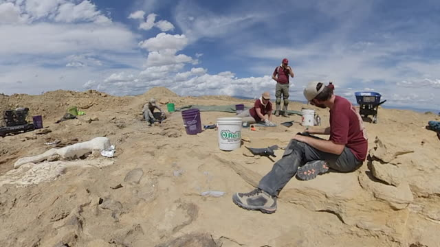 timelapse of excavation of biggest site for dinosaur bones anywhere in the world the archaeological dig is dubbed mission jurassic wyoming - wyoming stock videos & royalty-free footage