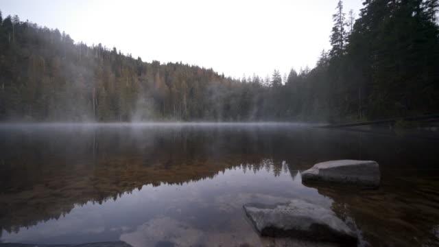 黒い森の湖の上の霧のタイムラプス - シュバルツバルト点の映像素材/bロール