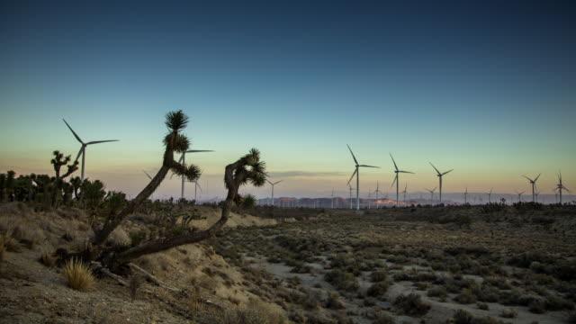 Timelapse of Joshua Trees and Wind Farm.