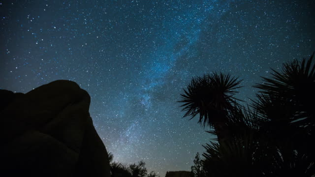 timelapse of milky way and joshua trees. - joshua tree national park stock videos & royalty-free footage
