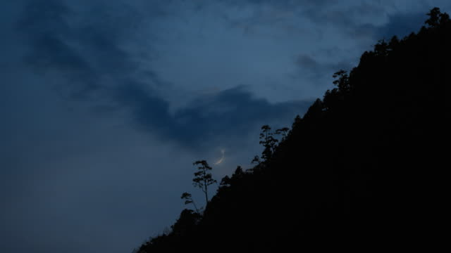 timelapse of moon setting behind tree and mountain silhouette
