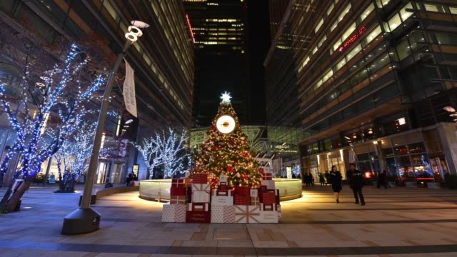 timelapse of people walking past illuminated christmas trees at night in the ginza district of tokyo, japan, on wednesday, dec. 20 timelapse of... - ナイトイン点の映像素材/bロール