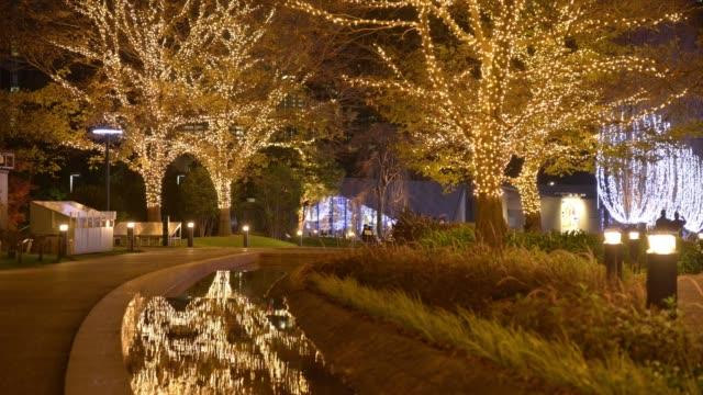 timelapse of people walking past illuminated christmas trees at night in tokyo, japan, on wednesday, dec. 20, 2016 - ナイトイン点の映像素材/bロール