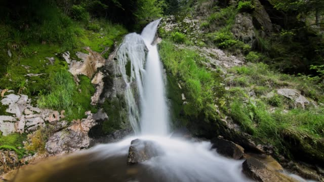 timelapse of river in forest - baden wurttemberg stock videos and b-roll footage