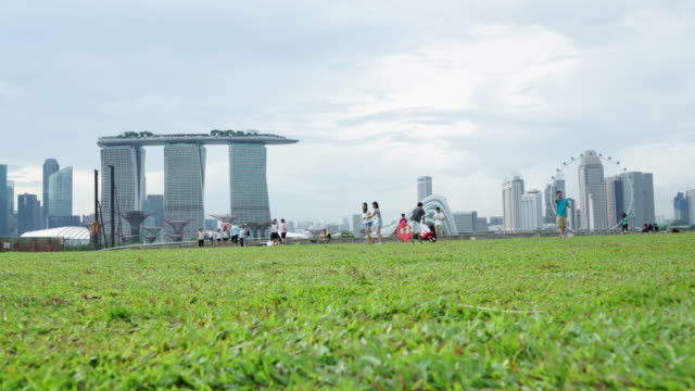 timelapse of singapore skyline from marina barrage - picnic stock videos and b-roll footage