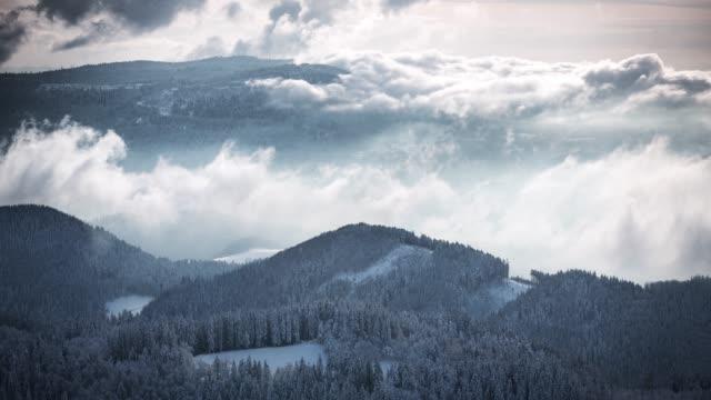 雪のタイムラプスは、冬の森を覆われています。 - シュバルツバルト点の映像素材/bロール