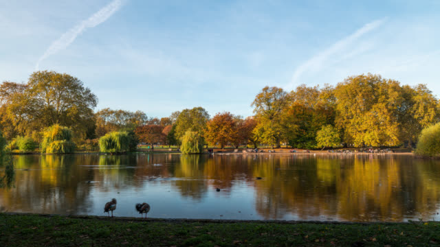 LONDON - TimeLapse of St James Park in Autumn