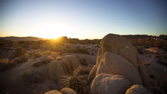 timelapse of sunrise at jumbo rocks, joshua tree national park. - joshua tree national park stock videos & royalty-free footage