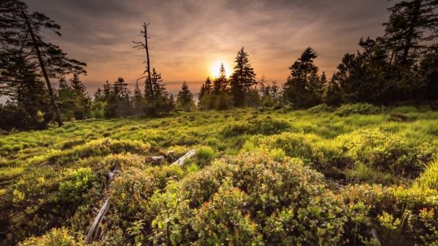 緑の草原に沈む夕日のタイムラプス - シュバルツバルト点の映像素材/bロール