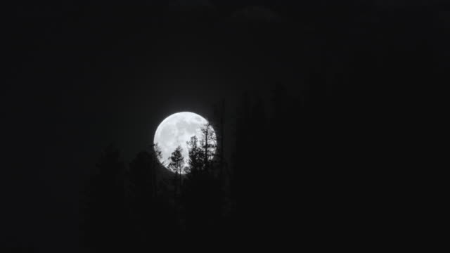 timelapse of the full moon over the forest - wyoming stock videos & royalty-free footage