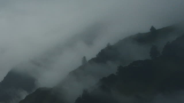 timelapse of tree and mountain silhouette - china east asia stock videos & royalty-free footage