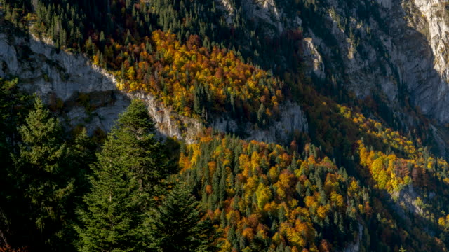 timelapse of trees and mountains shadow in durmitor national park - durmitor national park stock videos & royalty-free footage