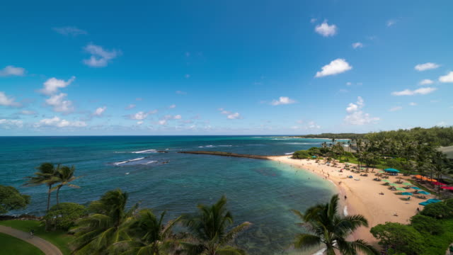o'ahu - timelapse of turtle bay beach in a clear day - turtle bay hawaii stock videos and b-roll footage