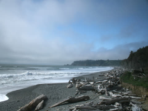 time-lapse of waves of pacific in washingtontime-lapse of pacific coast in washington - nordpazifik stock-videos und b-roll-filmmaterial