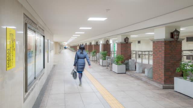 時間経過は: 歩行者は、地下鉄銀座駅での混雑 - 地下鉄駅点の映像素材/bロール
