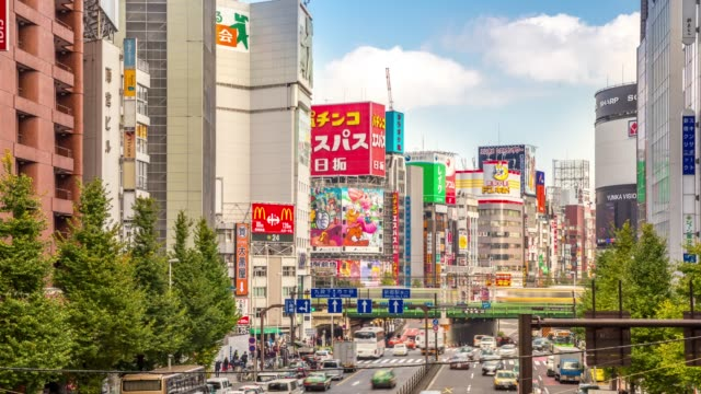 4 K Time-lapse: voetgangers druk op Shinjuku Tokyo