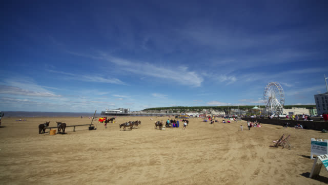 timelapse people and donkeys on sunny beach, weston-super-mare, uk - weston super mare stock videos and b-roll footage