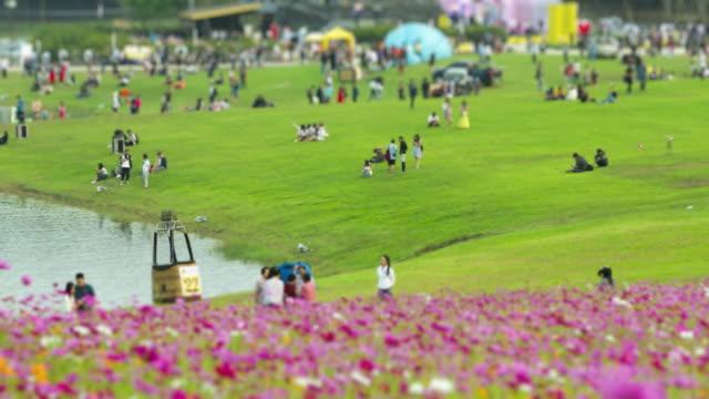 4K Zeitraffer: Menschen genießen Sie den Frühling im Central Park