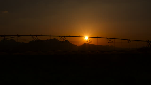 timelapse pivot irrigation system watering crops in desert at sunset, jordan - irrigation equipment stock videos & royalty-free footage