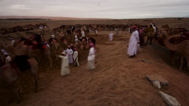 timelapse preperations for camel racing, ibra, oman  - oman stock videos & royalty-free footage