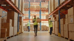 Time-Lapse: Retail Warehouse full of Shelves with Goods in Cardboard Boxes, Workers Scan and Sort Packages, Move Inventory with Pallet Trucks and Forklifts. Product Distribution Logistics Center
