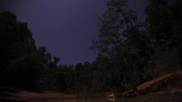 stockvideo's en b-roll-footage met timelapse stars drift through night sky over rainforest trees, gwa, myanmar - tropisch regenwoud
