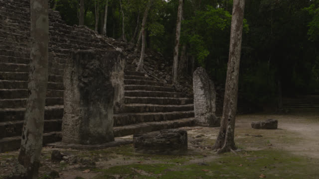 """Timelapse steps of Mayan temple ruins in forest, Calakmul, Mexico"""