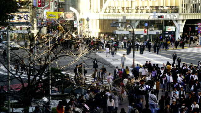 time-lapse :street scene in shinjuku ward of tokyo, japan - population explosion stock videos and b-roll footage