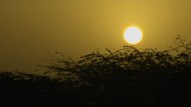 timelapse sunrise pavgadh champaner gujarat - グジャラート州点の映像素材/bロール