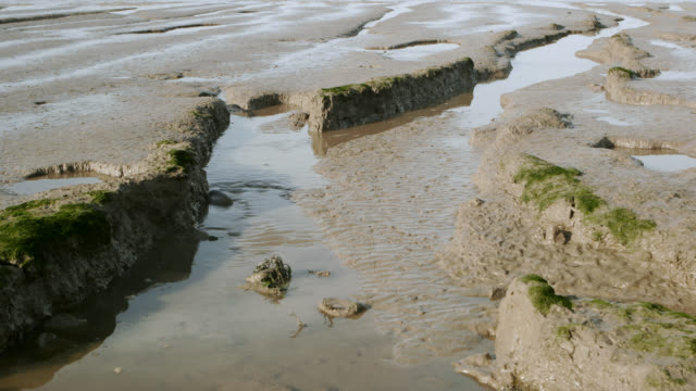 Timelapse tide comes in over mud flats, Somerset, UK