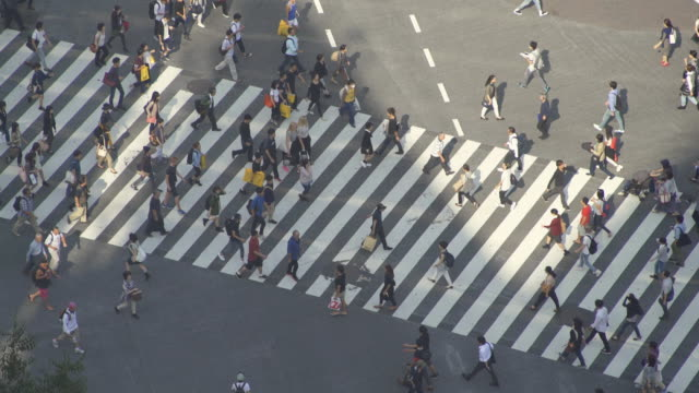time-lapse: tokyo shibuya crossing, japan - crossroad stock videos & royalty-free footage
