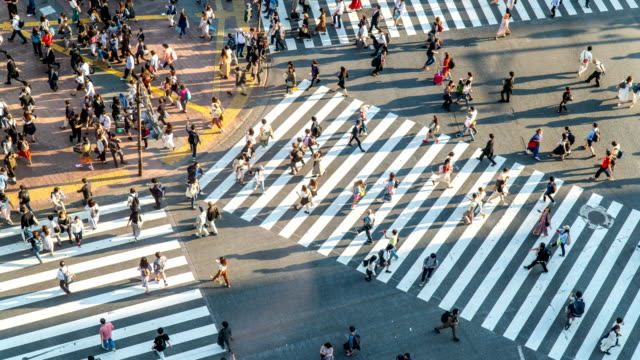 timelapse - top view of pedestrians at shibuya crossing in tokyo, japan - zebra crossing stock videos & royalty-free footage