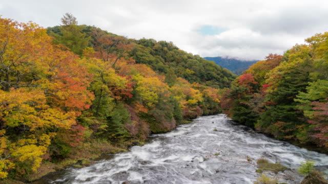 vídeos de stock, filmes e b-roll de time-lapse: ryuzu superior cai do ryuzu ponte com lago chuzenji nikko tochigi japão - riacho
