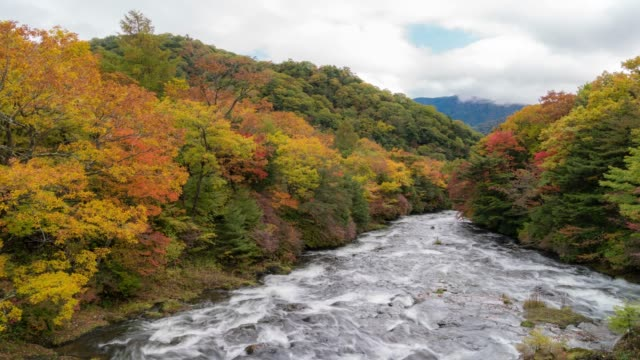 vídeos de stock e filmes b-roll de time-lapse: upper ryuzu falls from ryuzu bridge with lake chuzenji nikko tochigi japan - margem do rio
