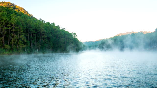 time-lapse video of fog flowing on lake in the morning at pang ung forestry plantations, mae hong son province, thailand - mae hong son province stock videos and b-roll footage