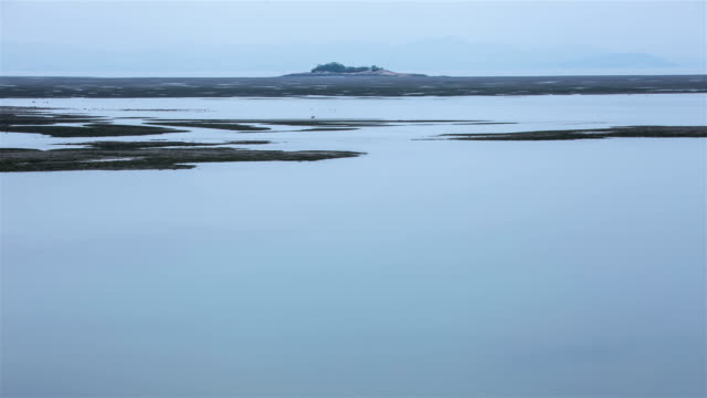 time-lapse view of mudflats at high tide / wando-gun, jeollanam-do, south korea - eco tourism stock videos & royalty-free footage