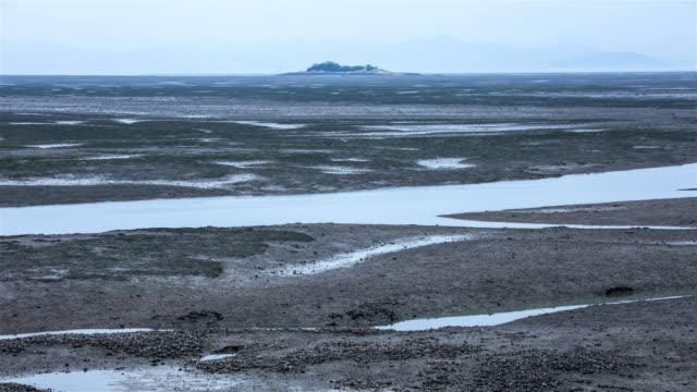 time-lapse view of mudflats at low tide / wando-gun, jeollanam-do, south korea - south pacific ocean点の映像素材/bロール