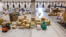Time-lapse: working in warehouse of Toyosu wholesale Fish Market Tokyo Japan
