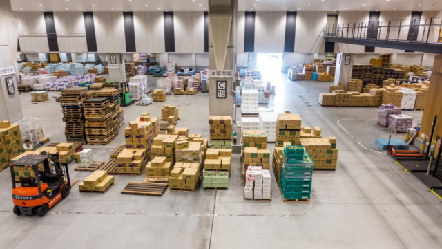 time-lapse: working in warehouse of toyosu wholesale fish market tokyo japan - freight transportation stock videos & royalty-free footage