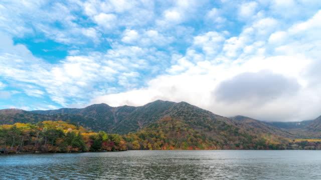 vídeos de stock, filmes e b-roll de lapso de tempo: yumoko lago superior nikko tochigi japão - riacho