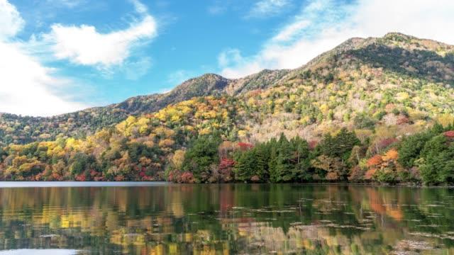 time-lapse: yumoko lake upper nikko tochigi japan - satoyama scenery stock videos & royalty-free footage