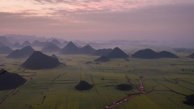 timelapse:canola flower field wiht sunrise - oilseed rape stock videos & royalty-free footage